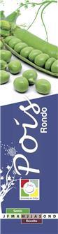 Rondo pea seeds