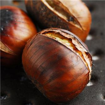 Chestnuts: what you should know