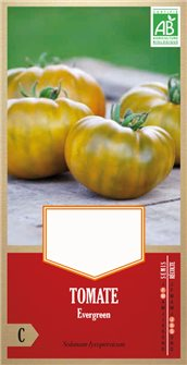 Evergreen AB tomato seeds