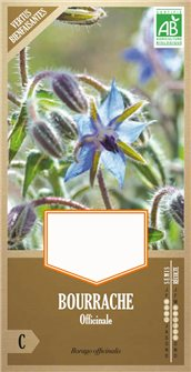 Organic borage or starflower seeds