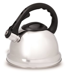 Stainless steel induction kettle 3 liters