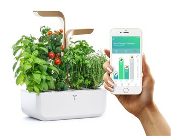 Bluetooth Connect Edition Indoor Garden White and Gold Genuine connected