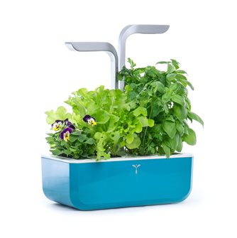 Smart Edition Smart Edition Indoor Garden Blue Genuine