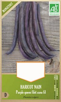 Purple Queen French bean seeds
